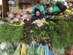 """Die """"Apotheke"""" am Markt - Kräuter für jede Befindlichkeit"""